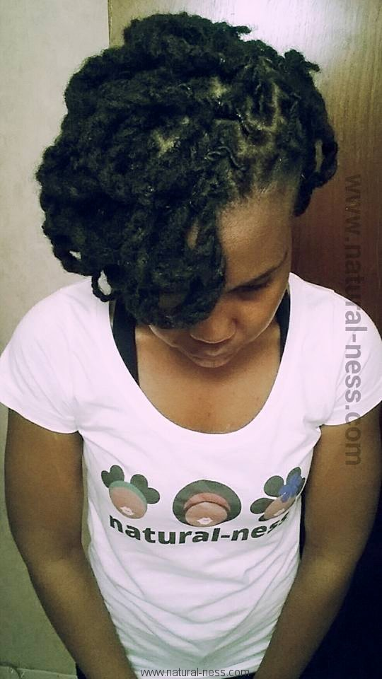 Two Strand Twists Loc Petals Naturalness A Journey Through The